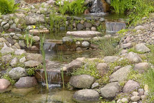 Zierteich Wasserlauf